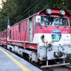 大井川鐵道を見てみる(後編) 井川線「南アルプスあぷとライン」